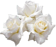 rose-blanche.png